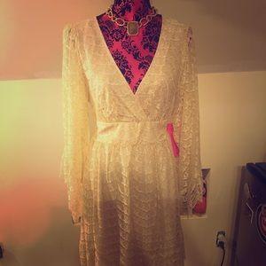 Betsy Johnson Lace dress sz 14 NWT
